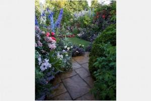 Edwin's garden